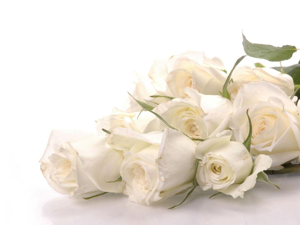 Открытка на день рождения с белыми розами
