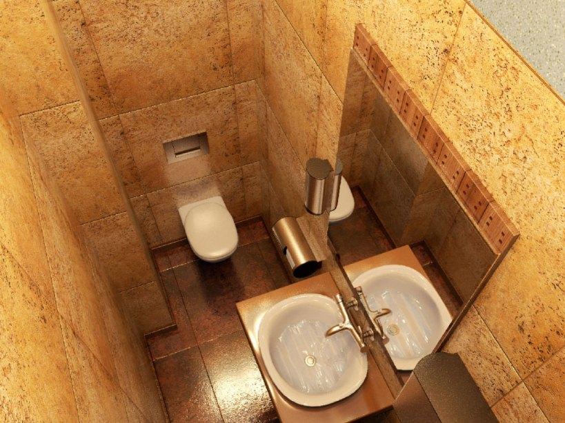 дизайн маленького туалета комнаты фото