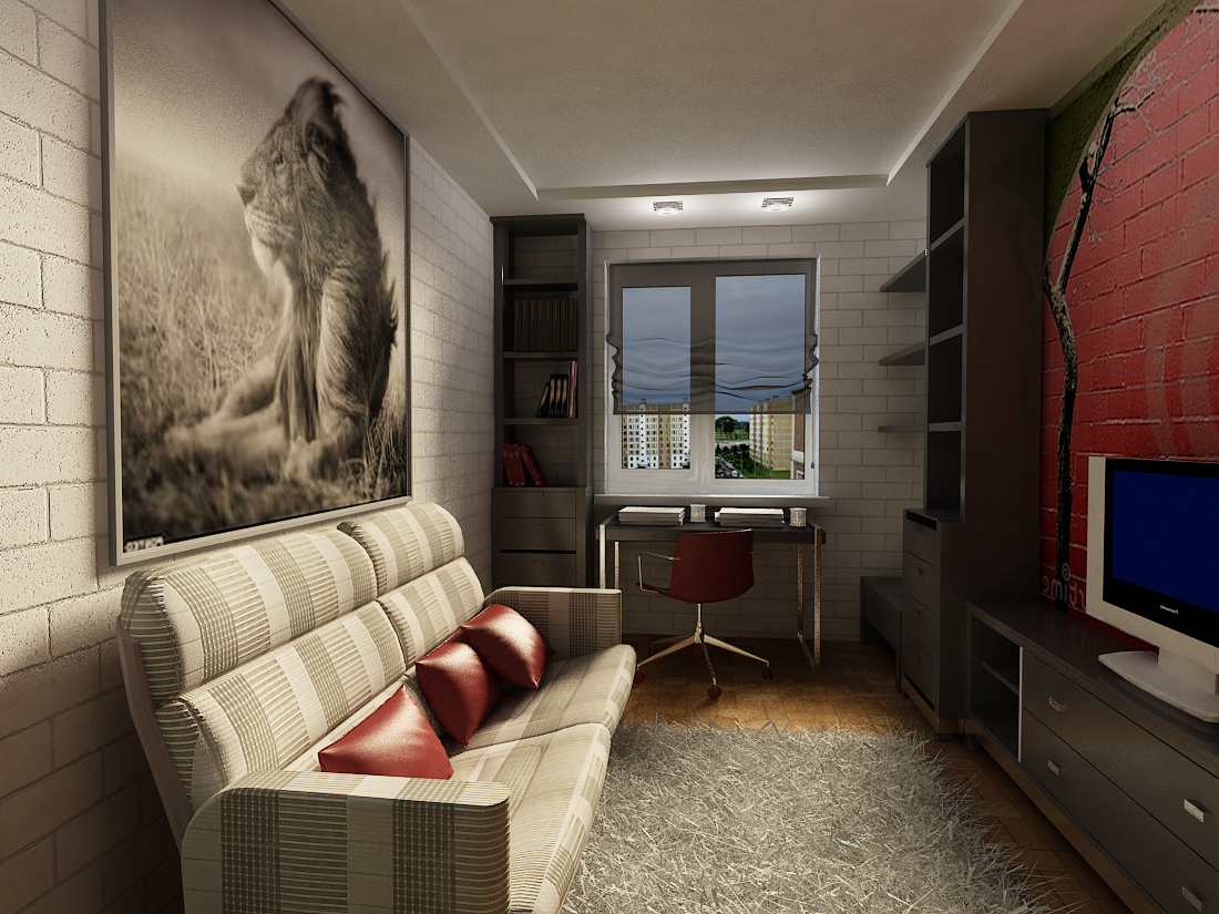 комната для юноши 20 лет фото 9 кв м