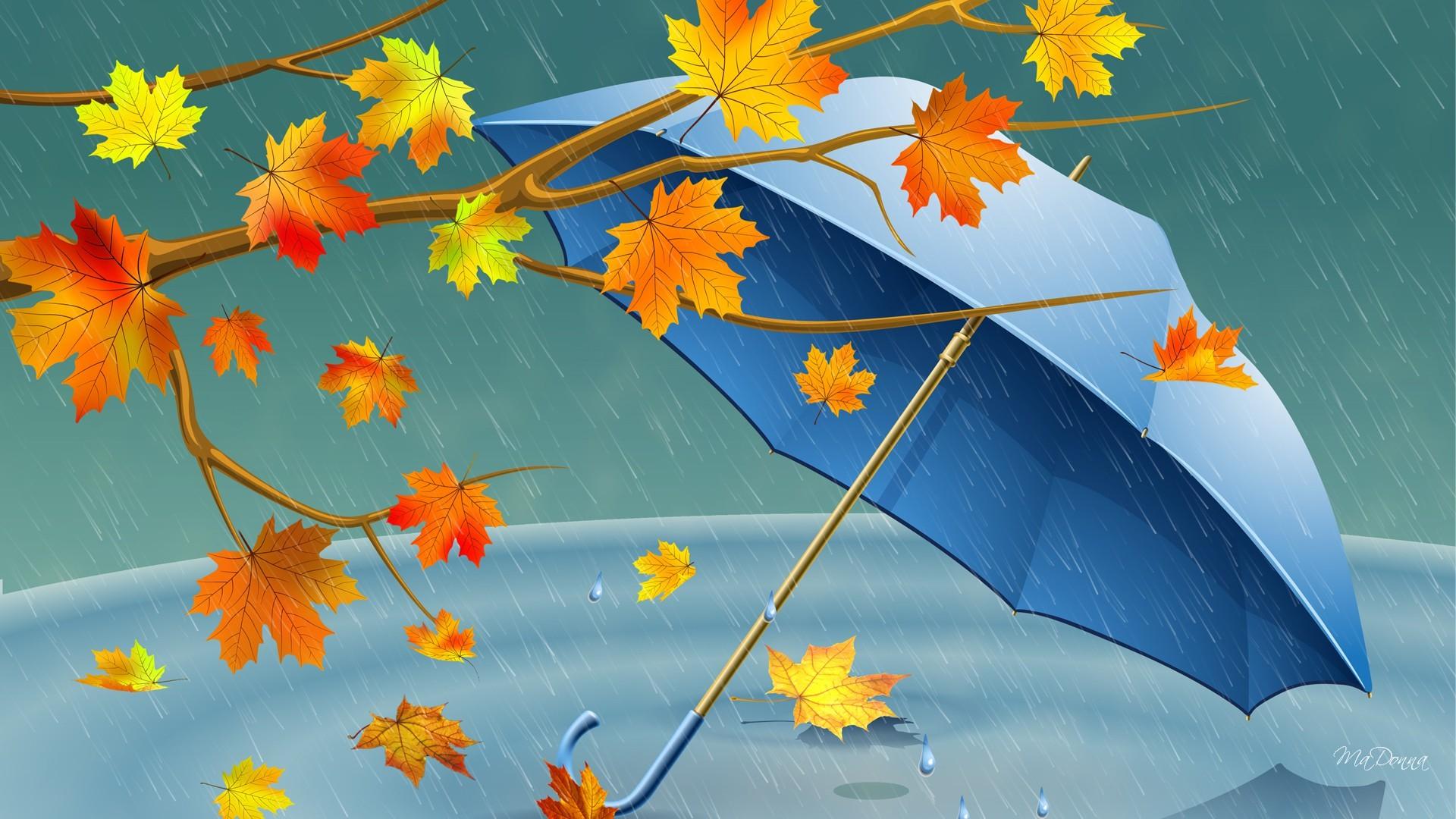 Зонт желтый лужи скачать