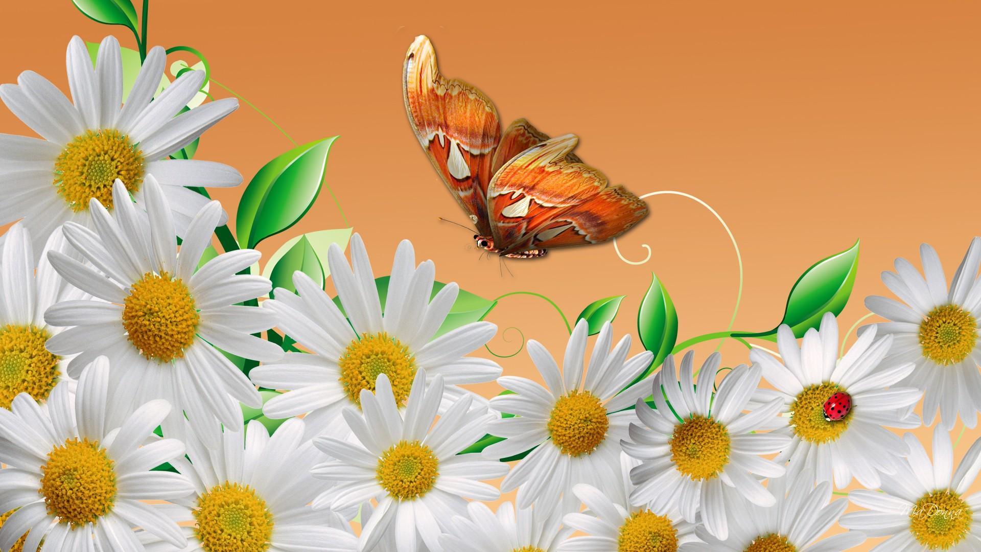 Обои на рабочий стол весна цветы широкоформатные ...  Обои на Телефон Цветы