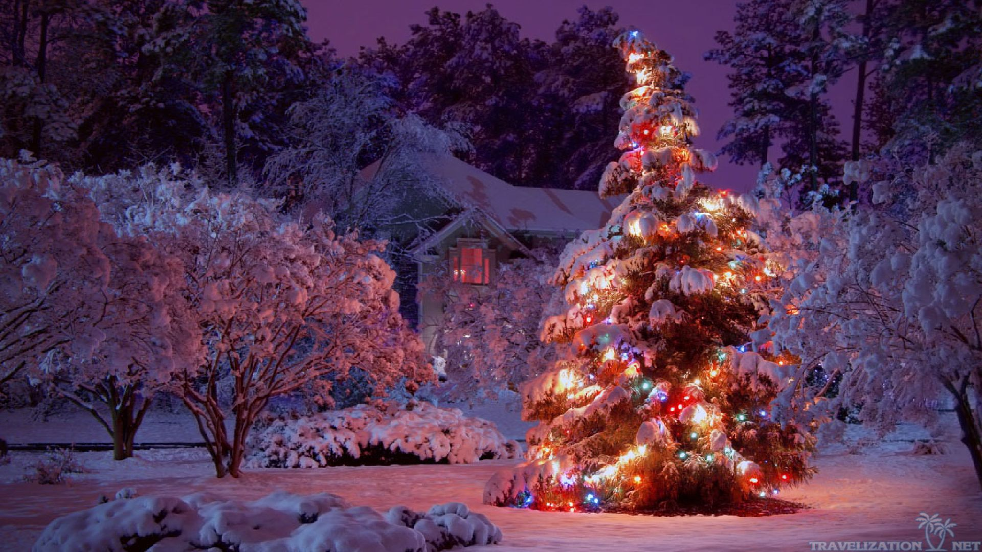 8739colorful-lights-winter-christmas-wal