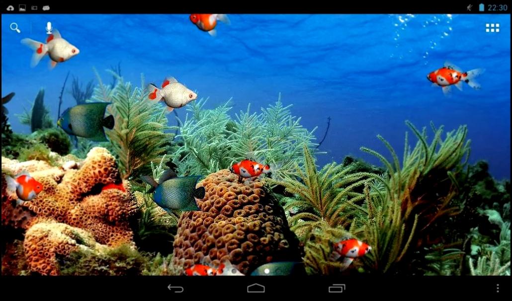Скачать бесплатно и без регистрации картинки море 14