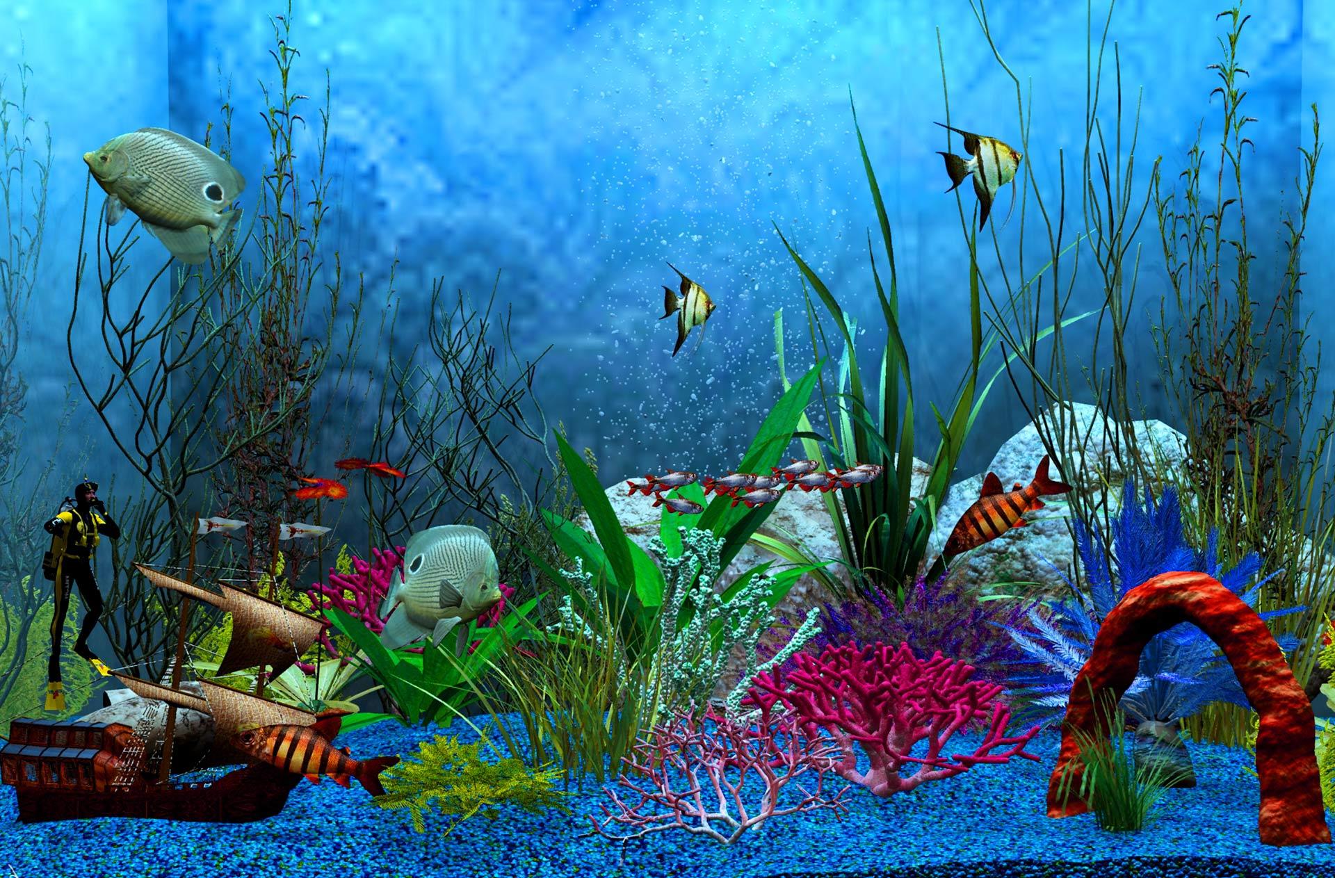 Девочек, картинки анимации рыбок на рабочий стол