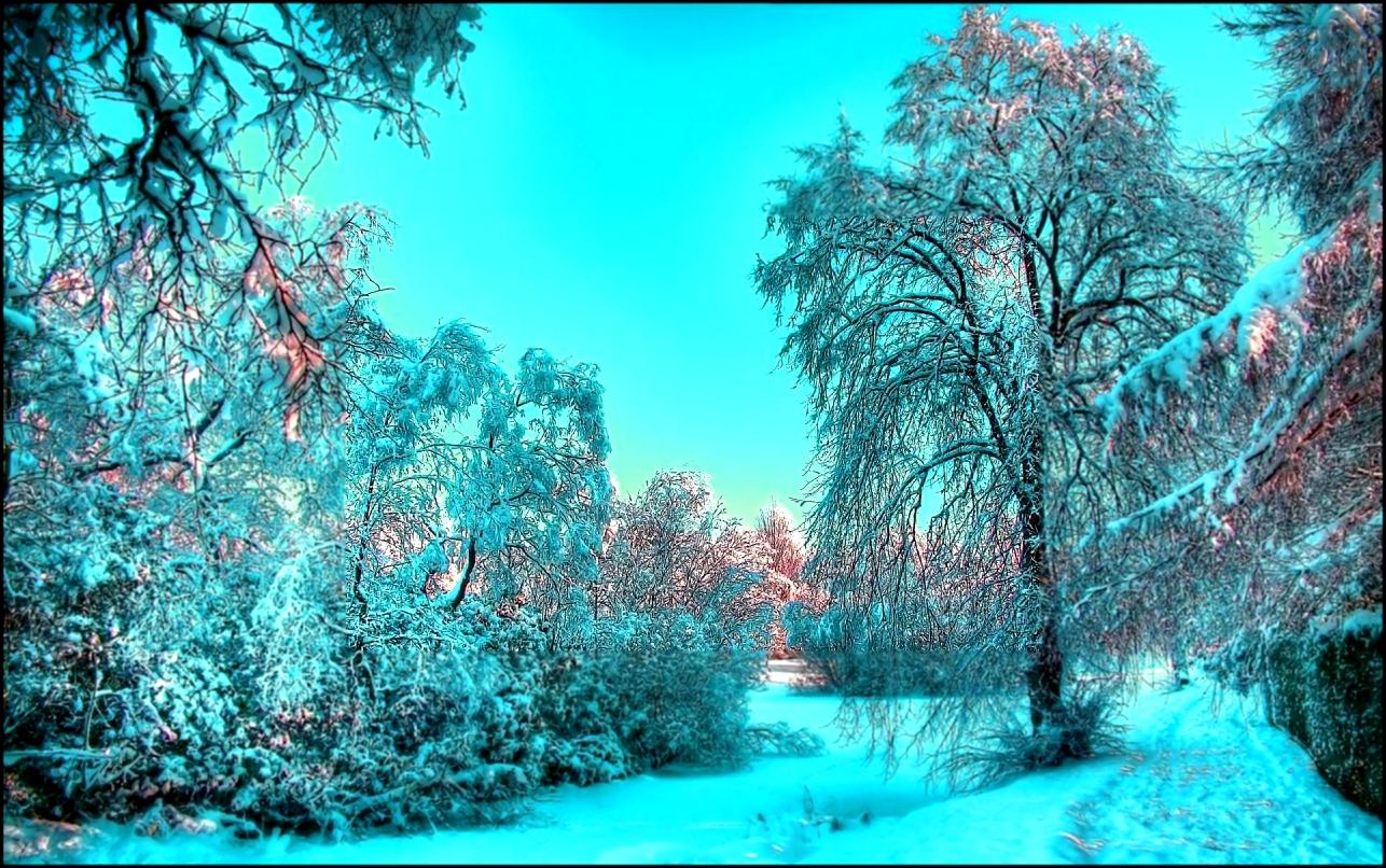 картинки на рабочий стол зима на весь экран