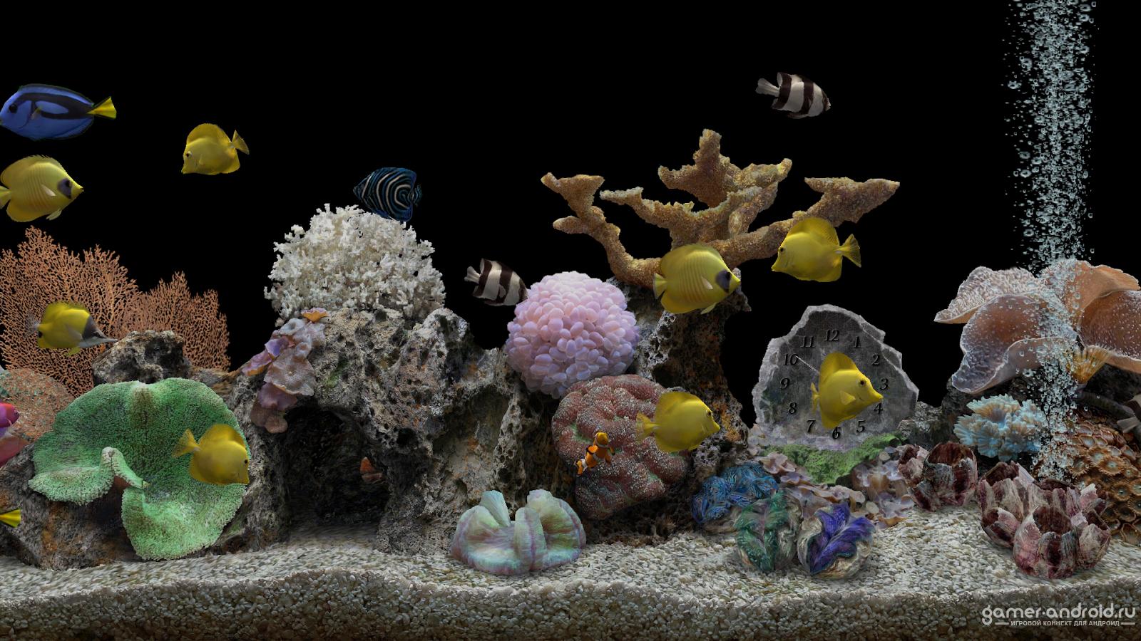 Скачать заставку аквариум на компьютер