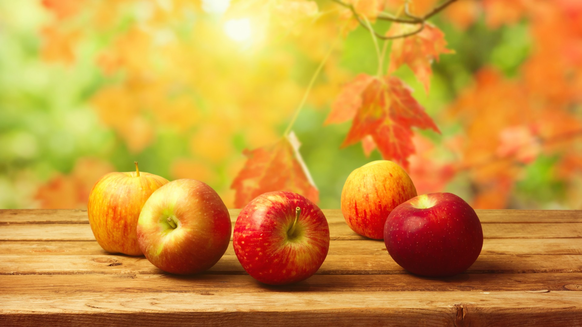 Картинки на рабочий стол осень с рябиной