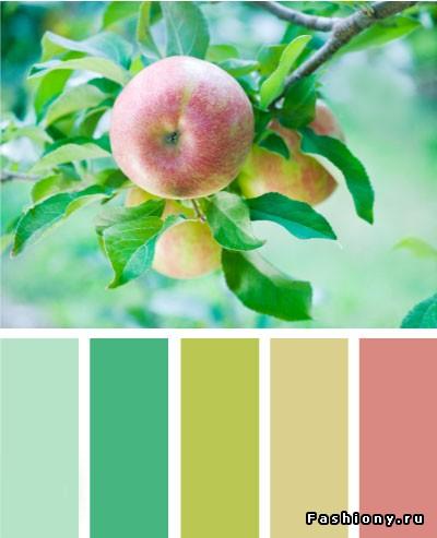 Мятный цвет сочетание с другими цветами в интерьере