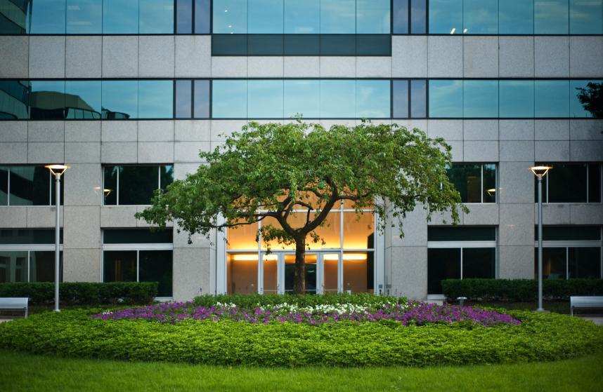 Ландшафтный дизайн у офисных зданий