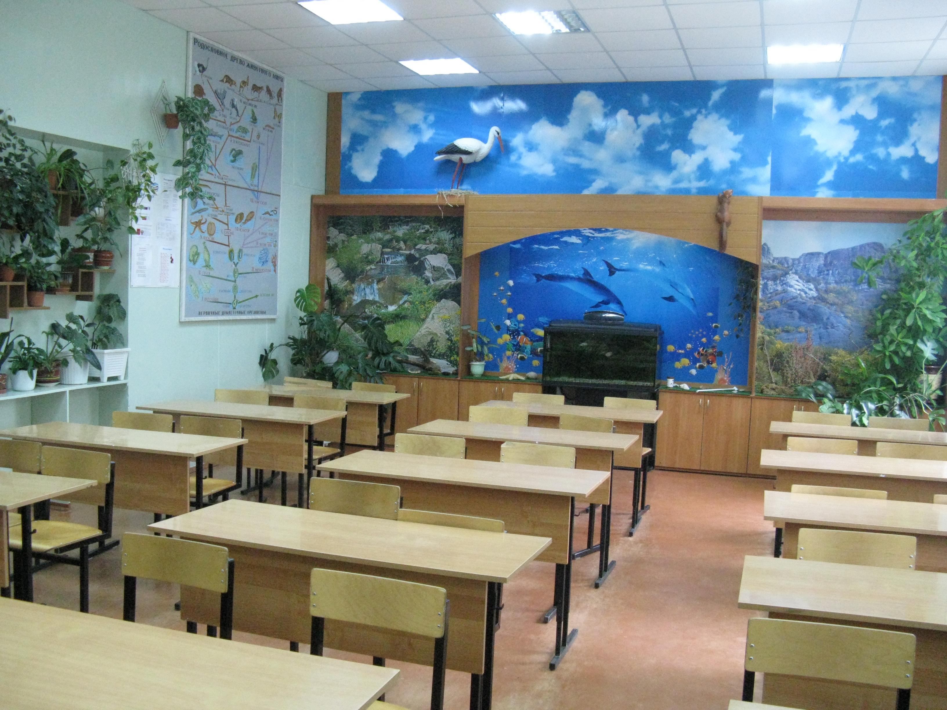 Оформление кабинета биологии своими руками в школе