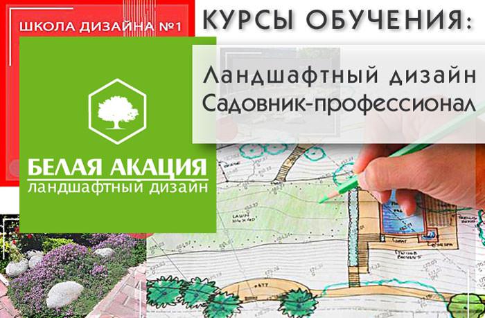Обучение дизайну курсы обучения ландшафтный дизайн