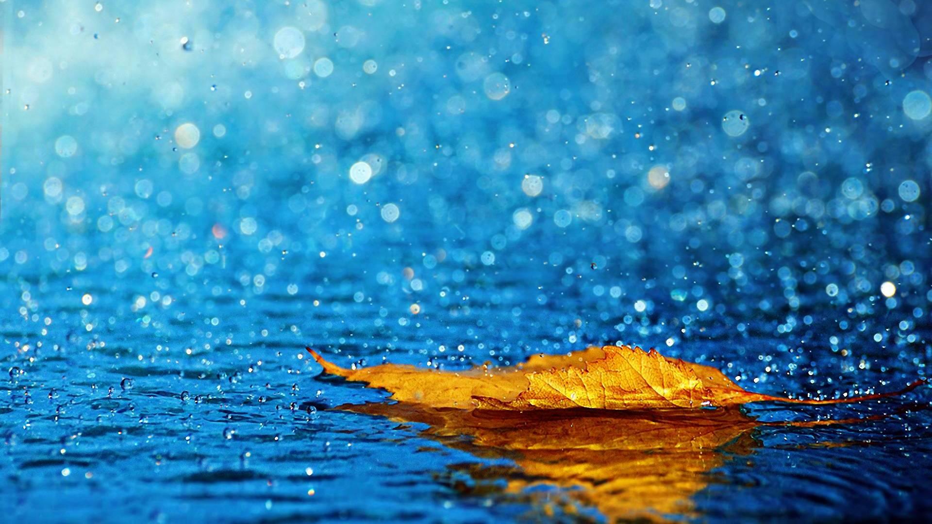 Осень дождь обои рабочий стол