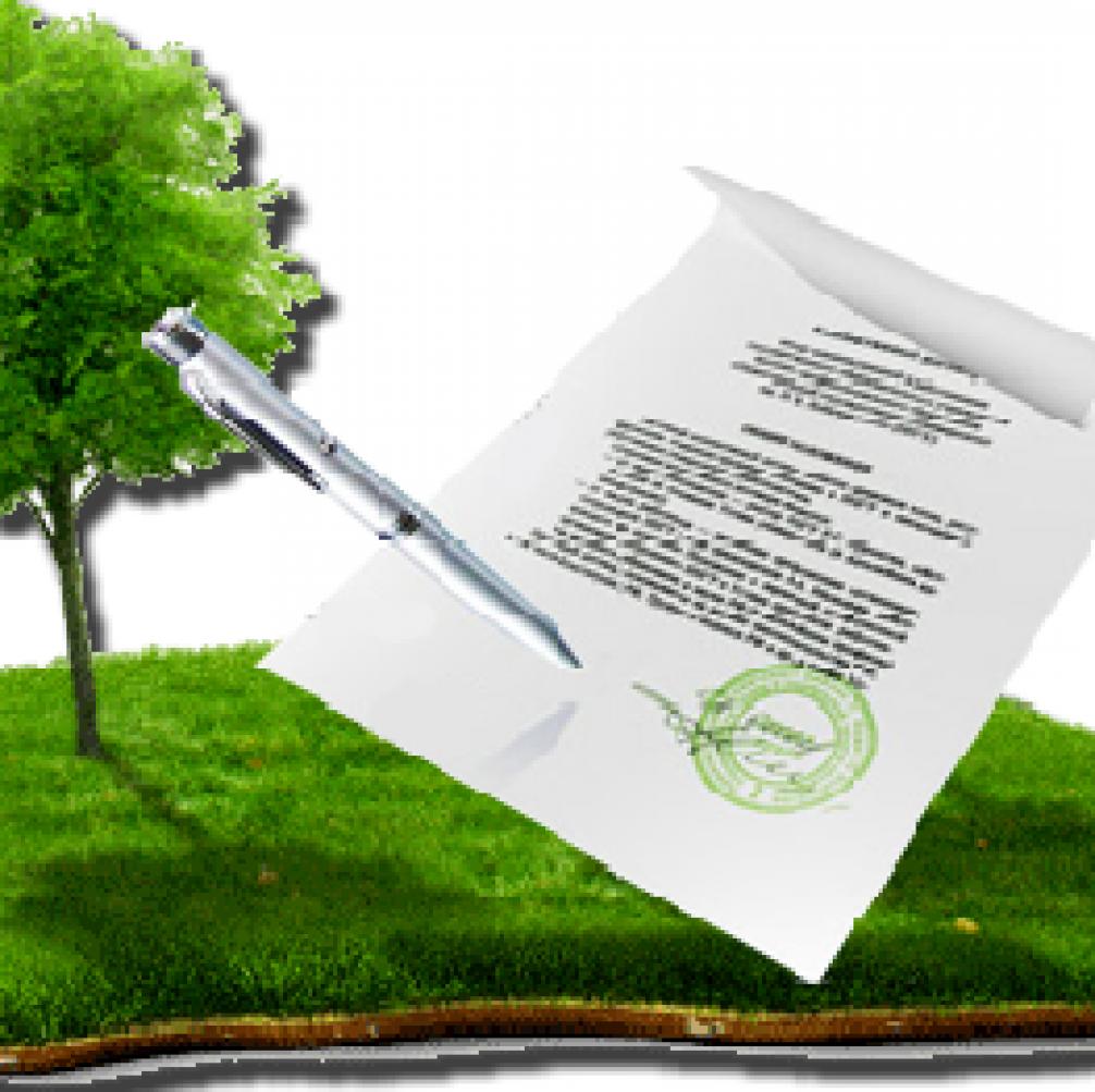 Статья 10. Земельные участки, которые могут находиться в собственности