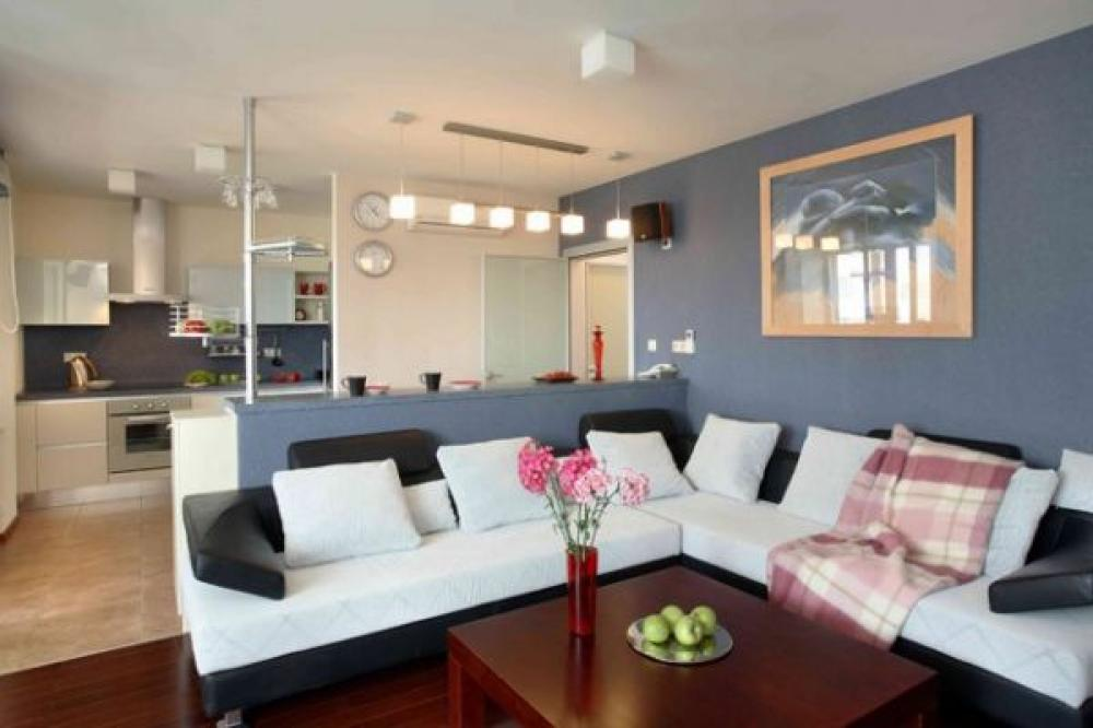 Фото квартир совмещенных с кухней дизайн