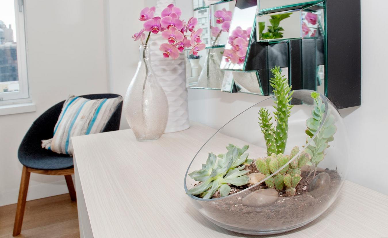 Комнатные цветы в интерьере дома